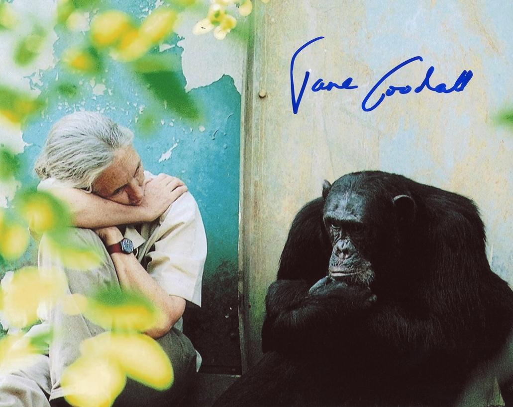 Jane Goodall Signed Photo